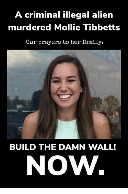Illegal Alien: A criminal illegal alien  murdered Mollie Tibbetts  Our prayers to her family.  BUILD THE DAMN WALL!  NOW.
