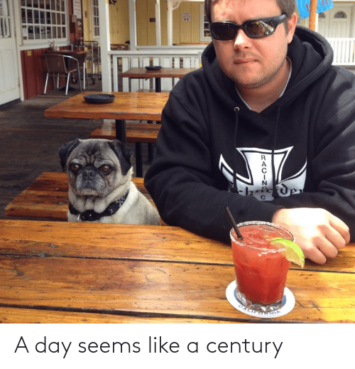 A Day: A day seems like a century