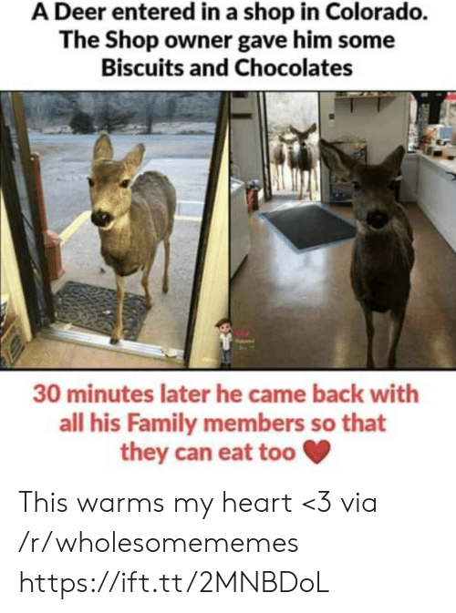 Colorado: A Deer entered in a shop in Colorado.  The Shop owner gave him some  Biscuits and Chocolates  30 minutes later he came back with  all his Family members so that  they can eat too This warms my heart <3 via /r/wholesomememes https://ift.tt/2MNBDoL