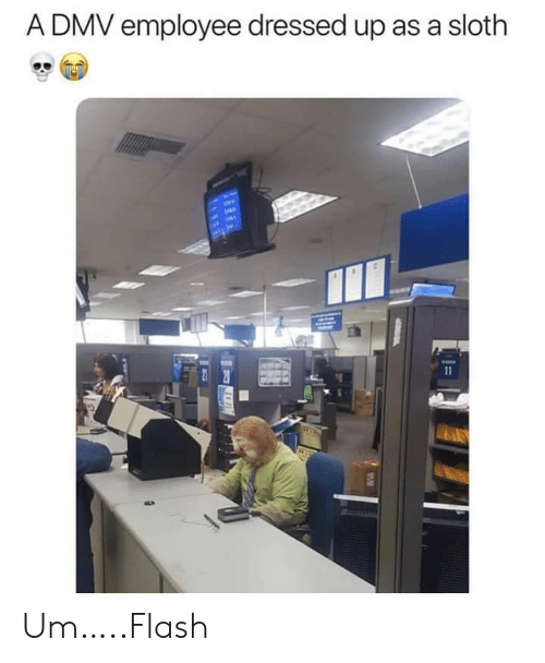 flash: A DMV employee dressed up as a sloth  11 Um…..Flash