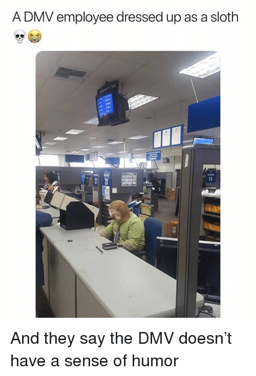DMV: A DMV employee dressed up as a sloth And they say the DMV doesn't have a sense of humor