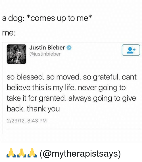 Alwaysed: a dog: *comes up to me*  me  Justin Bieber  @justinbieber  so blessed. so moved. so grateful. cant  believe this is my life. never going to  take it for granted. always going to give  back. thank you  2/29/12, 8:43 PM  SO 🙏🙏🙏 (@mytherapistsays)