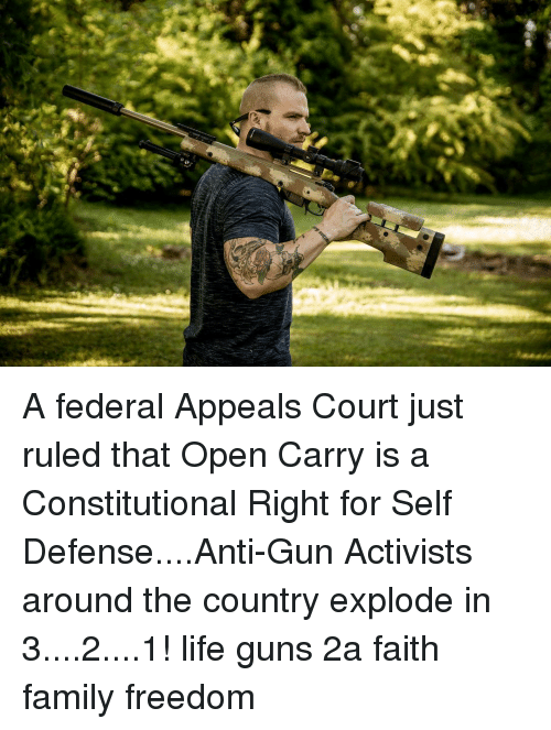 Family, Guns, and Life: A federal Appeals Court just ruled that Open Carry is a Constitutional Right for Self Defense....Anti-Gun Activists around the country explode in 3....2....1! life guns 2a faith family freedom