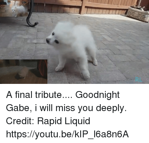 Tribution: A final tribute.... Goodnight Gabe, i will miss you  deeply.  Credit: Rapid Liquid https://youtu.be/kIP_l6a8n6A