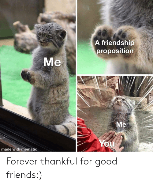 thankful: A friendship  proposition  Me  Me  You  made with mematic Forever thankful for good friends:)