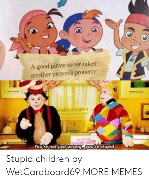 Children, Dank, and Memes: A good pirate never takes  another person's property  uimDraconLion  @ImDraconLion  You re not just wrong voure stupid Stupid children by WetCardboard69 MORE MEMES