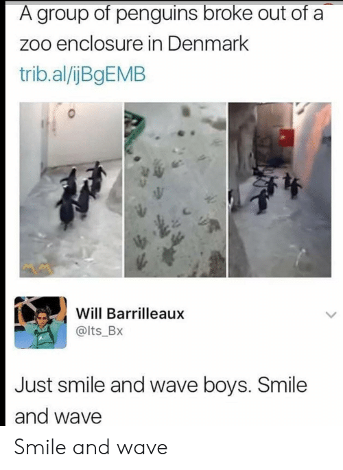 Penguins: A group of penguins broke out of a  zoo enclosure in Denmark  trib.al/ijBgEMB  Will Barrilleaux  @lts_Bx  Just smile and wave boys. Smile  and wave Smile and wave