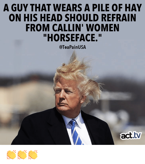 """Head, Memes, and Women: A GUY THAT WEARS A PILE OF HAY  ON HIS HEAD SHOULD REFRAIN  FROM CALLIN' WOMEN  """"HORSEFACE.""""  @TeaPainUSA  act.tv 👏👏👏"""