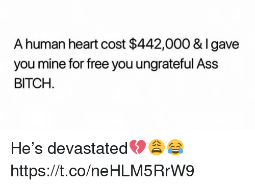 Ass, Bitch, and Free: A human heart cost $442,000 & Igave  you mine for free you ungrateful Ass  BITCH He's devastated💔😩😂 https://t.co/neHLM5RrW9
