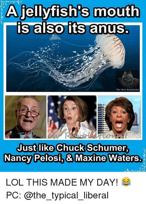 Maxine: A jellyfish's mouth  is also its anus  The Mew Revolution  Just like Chuck Schumer  Nancy  Pelosi.& Maxine Waters. LOL THIS MADE MY DAY! 😂 PC: @the_typical_liberal