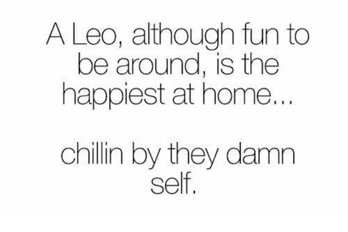 Home, Fun, and Leo: A Leo, although fun to  be around, is the  happiest at home..  chillin by they damn  self,