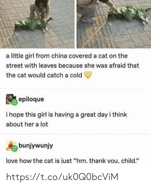 """Love, Memes, and China: a little girl from china covered a cat on the  street with leaves because she was afraid that  the cat would catch a cold  epiloque  i hope this girl is having a great day i think  about her a lot  bunjywunjy  love how the cat is iust """"hm. thank you, child."""" https://t.co/uk0Q0bcViM"""