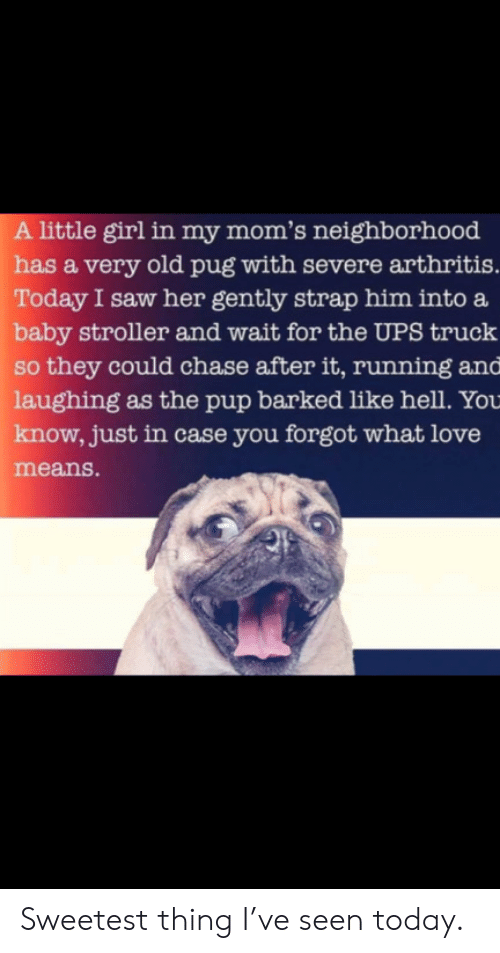 UPS: A little girl in my mom's neighborhood  has a very old pug with severe arthritis.  Today I saw her gently strap him into a  baby stroller and wait for the UPS truck  so they could chase after it, running and  laughing as the pup barked like hell. You  know, just in case you forgot what love  means. Sweetest thing I've seen today.