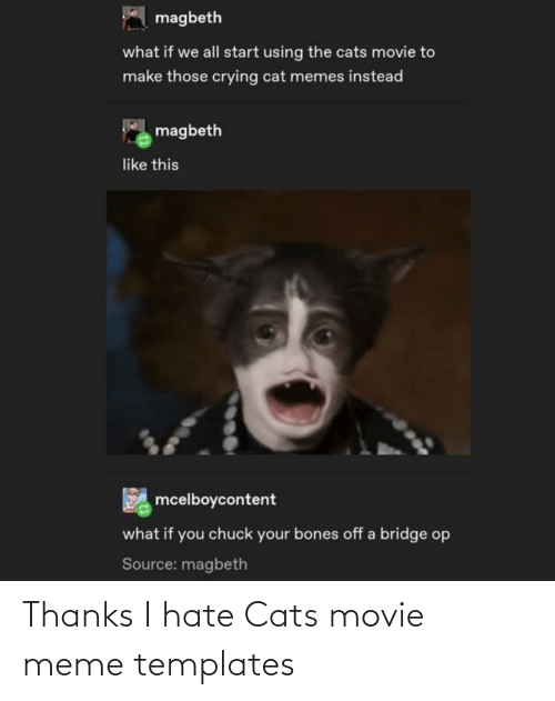 Movie Meme: A magbeth  what if we all start using the cats movie to  make those crying cat memes instead  magbeth  like this  mcelboycontent  what if you chuck your bones off a bridge op  Source: magbeth Thanks I hate Cats movie meme templates