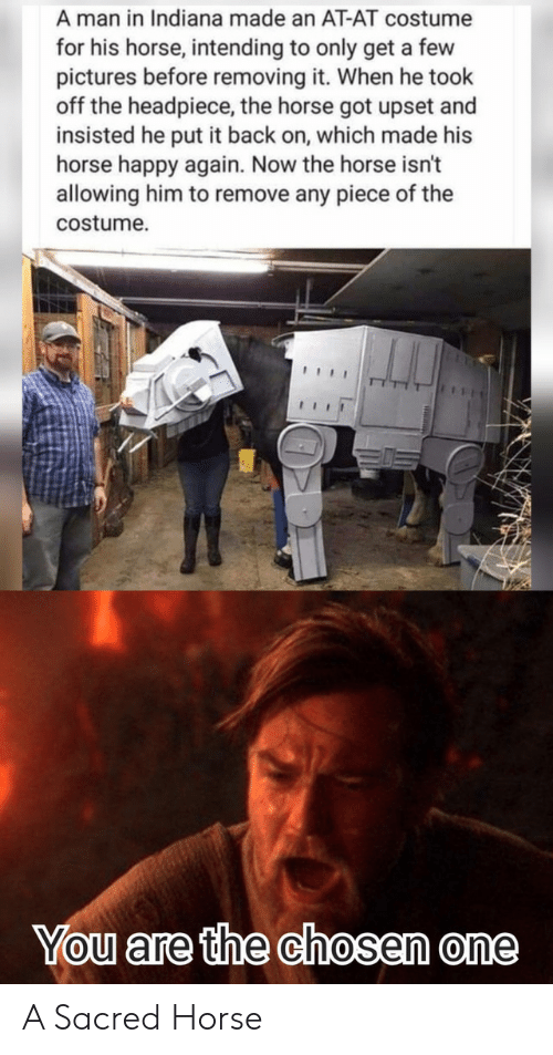 At-At, Happy, and Horse: A man in Indiana made an AT-AT costume  for his horse, intending to only get a few  pictures before removing it. When he took  off the headpiece, the horse got upset and  insisted he put it back on, which made his  horse happy again. Now the horse isn't  allowing him to remove any piece of the  costume  You are the chosen one A Sacred Horse