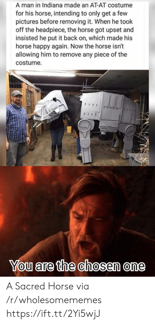At-At, Happy, and Horse: A man in Indiana made an AT-AT costume  for his horse, intending to only get a few  pictures before removing it. When he took  off the headpiece, the horse got upset and  insisted he put it back on, which made his  horse happy again. Now the horse isn't  allowing him to remove any piece of the  costume  You are the chosen one A Sacred Horse via /r/wholesomememes https://ift.tt/2Yi5wjJ