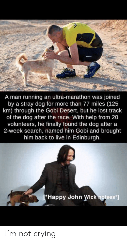 Crying, John Wick, and Not Crying: A man running an ultra-marathon was joined  by a stray dog for more than 77 miles (125  km) through the Gobi Desert, but he lost track  of the dog after the race. With help from 20  volunteers, he finally found the dog after a  2-week search, named him Gobi and brought  him back to live in Edinburgh.  Happy John Wick noises*] I'm not crying