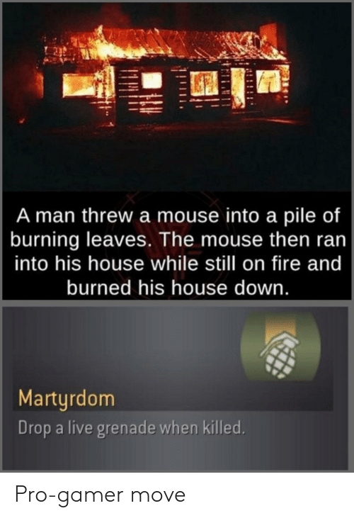 burned: A man threw a mouse into a pile of  burning leaves. The mouse then ran  into his house while still on fire and  burned his house down.  Martyrdom  Drop a live grenade when killed. Pro-gamer move