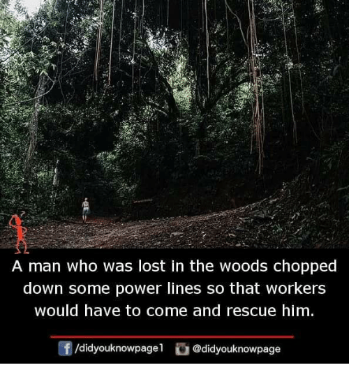 in the woods: A man who was lost in the woods chopped  down some power lines so that workers  would have to come and rescue him  f/didyouknowpagel@didyouknowpage