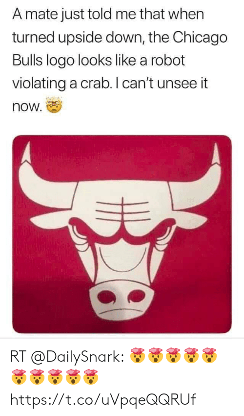 Chicago, Chicago Bulls, and Football: A mate just told me that when  turned upside down, the Chicago  Bulls logo looks like a robot  violating a crab. I can't unsee it  now. RT @DailySnark: 🤯🤯🤯🤯🤯🤯🤯🤯🤯🤯 https://t.co/uVpqeQQRUf