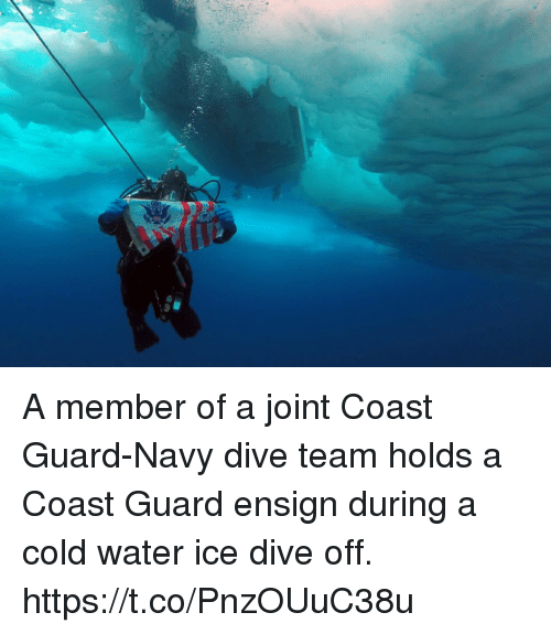 Memes, Navy, and Water: A member of a joint Coast Guard-Navy dive team holds a Coast Guard ensign during a cold water ice dive off. https://t.co/PnzOUuC38u