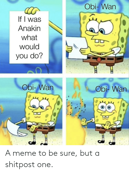 sure: A meme to be sure, but a shitpost one.