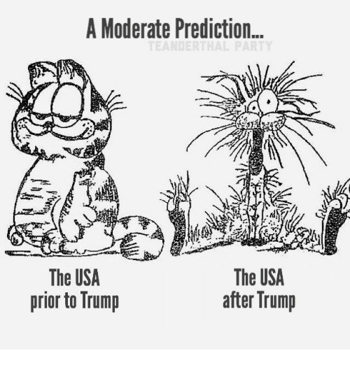 moderator: A Moderate Prediction...  The USA  The USA  after Trump  prior to Trump