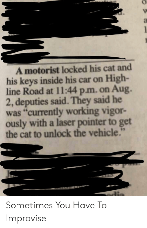 "Cat, Car, and Working: A motorist locked his cat and  his keys inside his car on High-  line Road at 11l:44 p.m. on Aug.  2, deputies said.They said he  was ""currently working vigor-  ously with a laser pointer to get  the cat to unlock the vehicle.""  edis Sometimes You Have To Improvise"