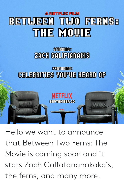 Dank, Hello, and Netflix: A NETFLIX FILM  BETUEEM THO FERMS  THE MOUIE  2ACH GALIFIANAKIS  FEATURING8  CELEBRITIES SOU'UE HEARD OF  NETFLIX  SEPTEMBER 20 Hello we want to announce that Between Two Ferns: The Movie is coming soon and it stars Zach Galfafananakakais, the ferns, and many more.