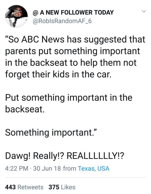 "usa: @ A NEW FOLLOWER TODAY  @RoblsRandomAF_6  ""So ABC News has suggested that  parents put something important  in the backseat to help them not  forget their kids in the car.  Put something important in the  backseat.  Something important.""  Dawg! Really!? REALLLLLLY!?  4:22 PM · 30 Jun 18 from Texas, USA  443 Retweets 375 Likes"