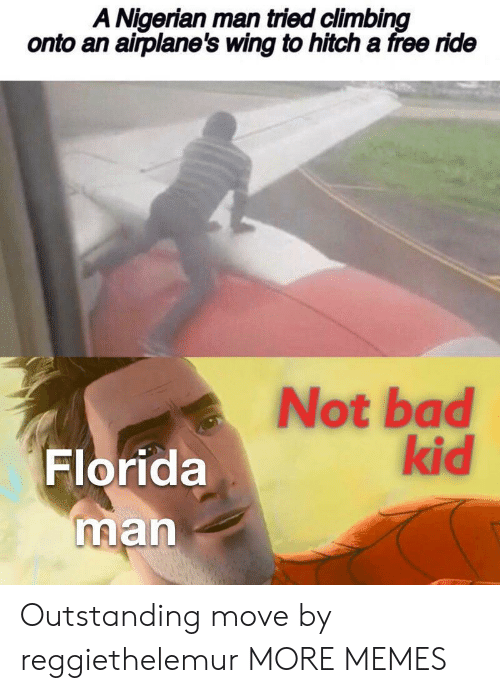 nigerian: A Nigerian man tried climbing  onto an airplane's wing to hitch a free ride  Not bad  kid  Florida  man Outstanding move by reggiethelemur MORE MEMES