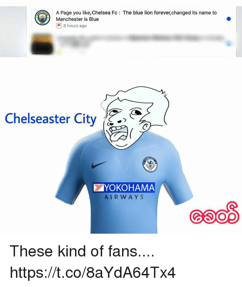 Chelsea Fc: A Page you like, Chelsea Fc: The blue lion forever,changed its name to  Manchester is Blue    8 hours ago  Chelseaster City^.>  ぐ  YOKOHAMA  AIRWAYS These kind of fans.... https://t.co/8aYdA64Tx4