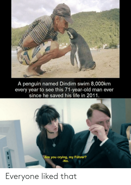 old man: A penguin named Dindim swim 8,000km  every year to see this 71-year-old man ever  since he saved his life in 2011.  Are you crying, my Führer?  -No. Everyone liked that