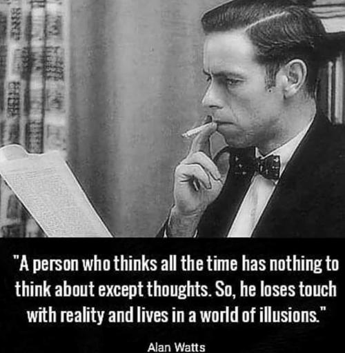 "Memes, Time, and World: ""A person who thinks all the time has nothing to  think about except thoughts. So, he loses touch  with reality and lives in a world of illusions.""  Alan Watts"