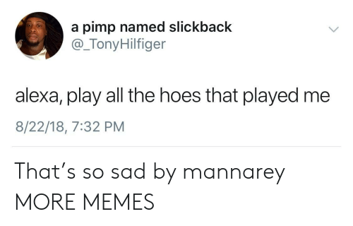 The Hoes: a pimp named slickback  @_TonyHilfiger  alexa, play all the hoes that played me  8/22/18, 7:32 PM That's so sad by mannarey MORE MEMES