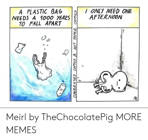 Dank, Fall, and Memes: A PLASTIC BAG ONLY NEED ONE  NEEDS A 1000 YEARSAFTERNOON  TO FALL APART  e u  乀J Meirl by TheChocolatePig MORE MEMES