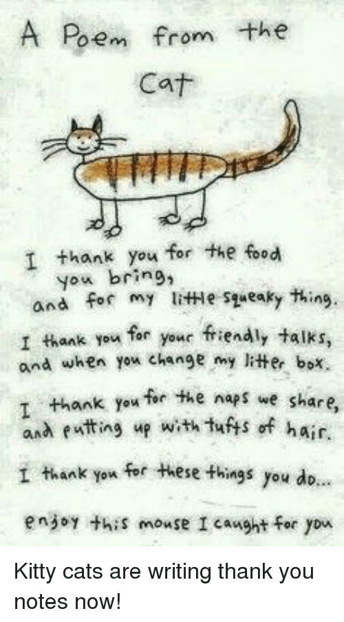 lithe: A Poem from the  Cat  I thank you for the food  you bring,  and for my litHe syueaky thing.  I thank you far your friendly talks,  and when yex change my litter box.  ank you for the naps we share  and eatting up with tuts of hair.  I thank you for these things you dio.  enjoy thiS mouse I caught for yon <p>Kitty cats are writing thank you notes now!</p>