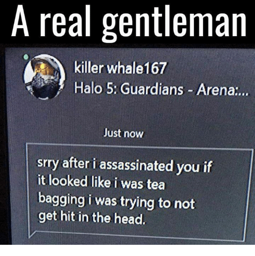 tea bagging: A real gentleman  killer whale167  Halo 5: Guardians Arena  Just now  srry after i assassinated you if  it looked like i was tea  bagging i was trying to not  get hit in the head.