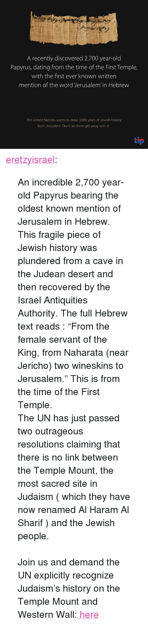 """Dating, Tumblr, and Blog: A recently discovered 2,700 year-old  Papyrus, dating from the time of the First Temple,  with the first ever known written  mention of the word Jerusalem' in Hebrew  The United Nations wants to erase 3,000 years of Jewish history  from Jerusalem. Don't let them get away with it.  tip <p><a class=""""tumblr_blog"""" href=""""http://eretzyisrael.tumblr.com/post/152396180252"""">eretzyisrael</a>:</p> <blockquote> <p>An incredible 2,700 year-old Papyrus bearing the oldest known mention of Jerusalem in Hebrew. This fragile piece of Jewish history was plundered from a cave in the Judean desert and then recovered by the Israel Antiquities Authority. The full Hebrew text reads : """"From the female servant of the King, from Naharata (near Jericho) two wineskins to Jerusalem."""" This is from the time of the First Temple.<br/>The UN has just passed two outrageous resolutions claiming that there is no link between the Temple Mount, the most sacred site in Judaism ( which they have now renamed Al Haram Al Sharif ) and the Jewish people.</p> <p><br/>Join us and demand the UN explicitly recognize Judaism's history on the Temple Mount and Western Wall:<a href=""""http://tip.nationbuilder.com/unesco""""> here</a></p> </blockquote>"""