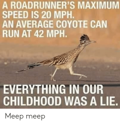 Maximum: A ROADRUNNER'S MAXIMUM  SPEED IS 20 MPH.  AN AVERAGE COYOTE CAN  RUN AT 42 MPH.  EVERYTHING IN OUR  CHILDHOOD WAS A LIE. Meep meep