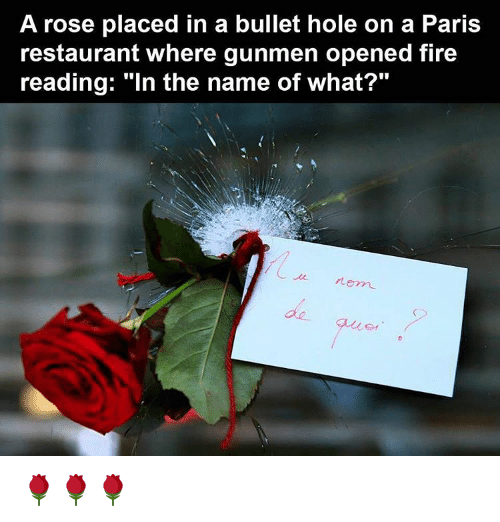 """bullet holes: A rose placed in a bullet hole on a Paris  restaurant where gunmen opened fire  reading: """"In the name of what?"""" 🌹🌹🌹"""