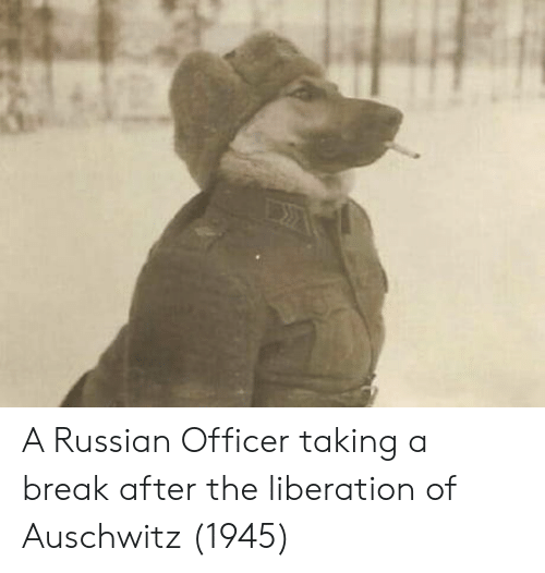 liberation: A Russian Officer taking a break after the liberation of Auschwitz (1945)