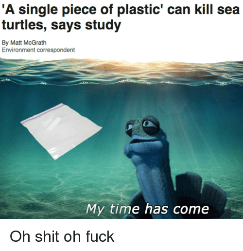 Shit, Fuck, and Time: 'A single piece of plastic' can kill seta  turtles, says study  By Matt McGrath  Environment correspondent  My time has come Oh shit oh fuck