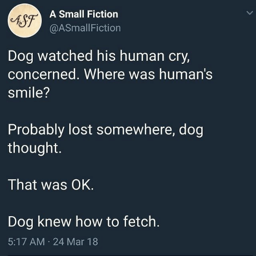 fetch: A Small Fiction  AST  @ASmallFiction  Dog watched his human cry,  concerned. Where was human's  smile?  Probably lost somewhere, dog  thought.  That was OK.  Dog knew how to fetch.  5:17 AM  24 Mar 18  >