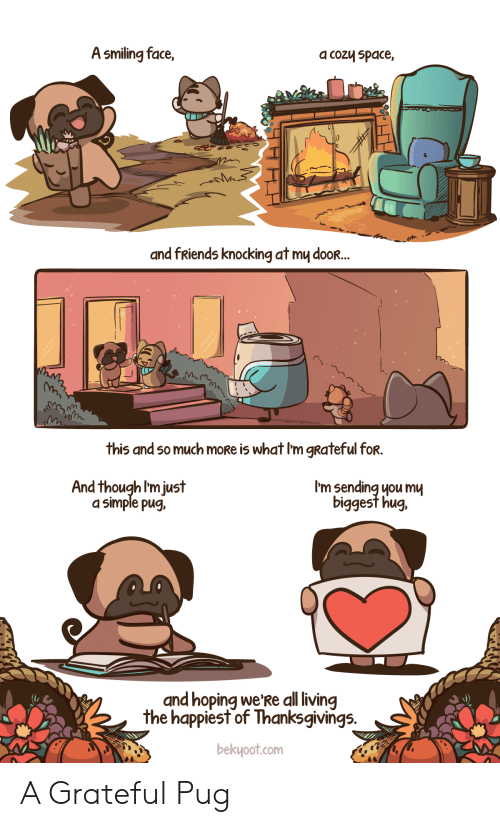 Im Just: A smiling face,  a cozy space,  and fRiends knocking at my dooR...  this and so much moRe is what I'm gRateful for.  I'm sending you mu  biggest hug.  And though I'm just  a simple pug,  and hoping we'Re all living  the happiest of Thanksgivings.  bekyoot.com A Grateful Pug