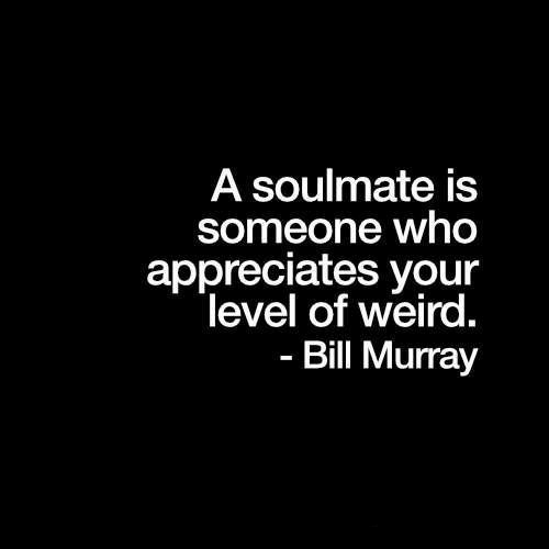 Bill Murray: A soulmate is  someone who  appreciates your  level of weird.  Bill Murray