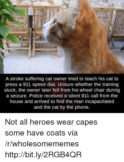 Phone, Police, and Heroes: A stroke suffering cat owner tried to teach his cat to  press a 911 speed dial. Unsure whether the training  stuck, the owner later fell from his wheel chair during  a seizure. Police received a silent 911 call from the  house and arrived to find the man incapacitated  and the cat by the phone. Not all heroes wear capes some have coats via /r/wholesomememes http://bit.ly/2RGB4QR