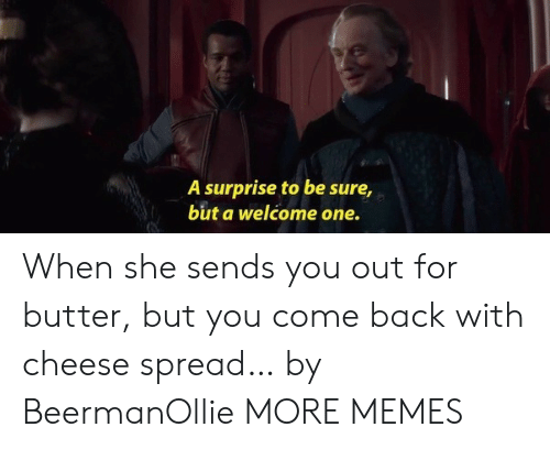Dank, Memes, and Target: A surprise to be sure,  but a welcome one. When she sends you out for butter, but you come back with cheese spread… by BeermanOllie MORE MEMES
