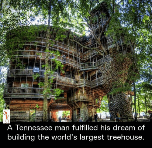 Memes, Tennessee, and 🤖: A Tennessee man fulfilled his dream of  building the world's largest treehouse.