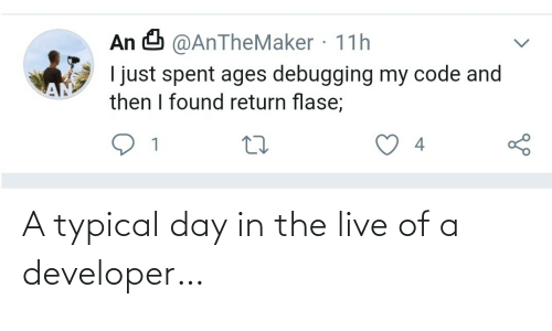 developer: A typical day in the live of a developer…